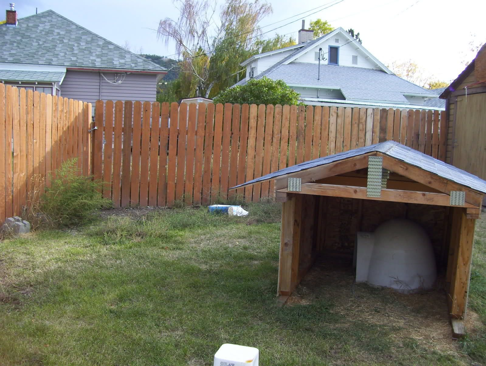 Shade For Dogs Outside How Big For Dog House Shade For Dogs