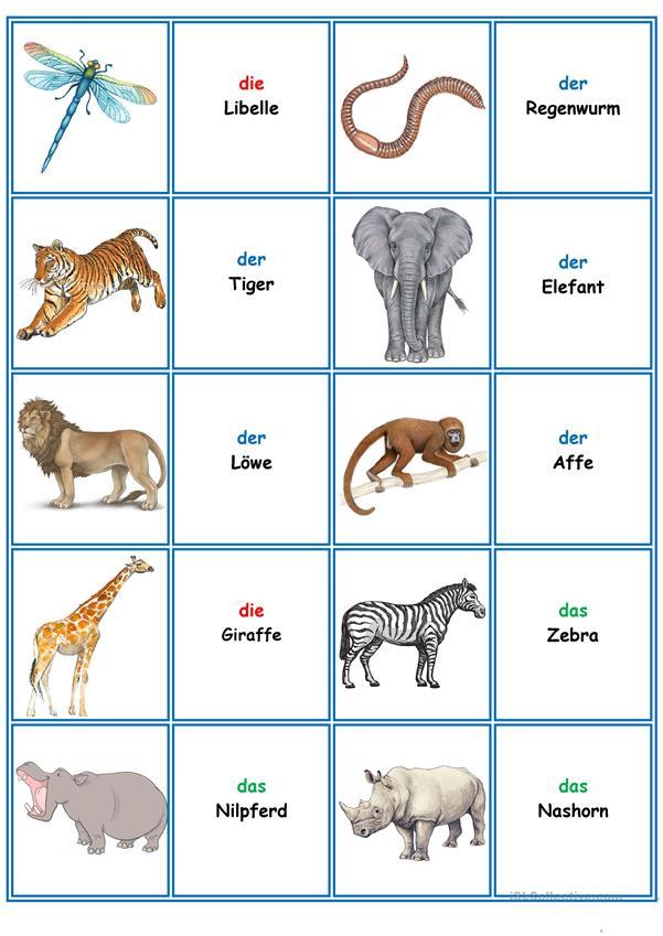 Spiele Im Deutschunterricht Memory Die Tiere Deutsch Unterricht Deutsch Lernen Und Deutsch