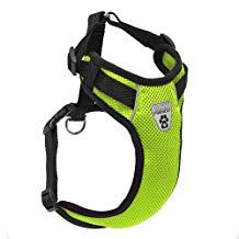Canine Friendly Vented Vest Harness, XSmall, Lime Dog