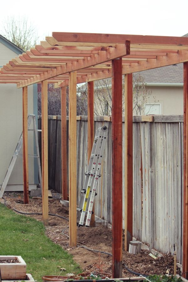 How to build a grape arbor step by step grape arbor and for Plans for arbors