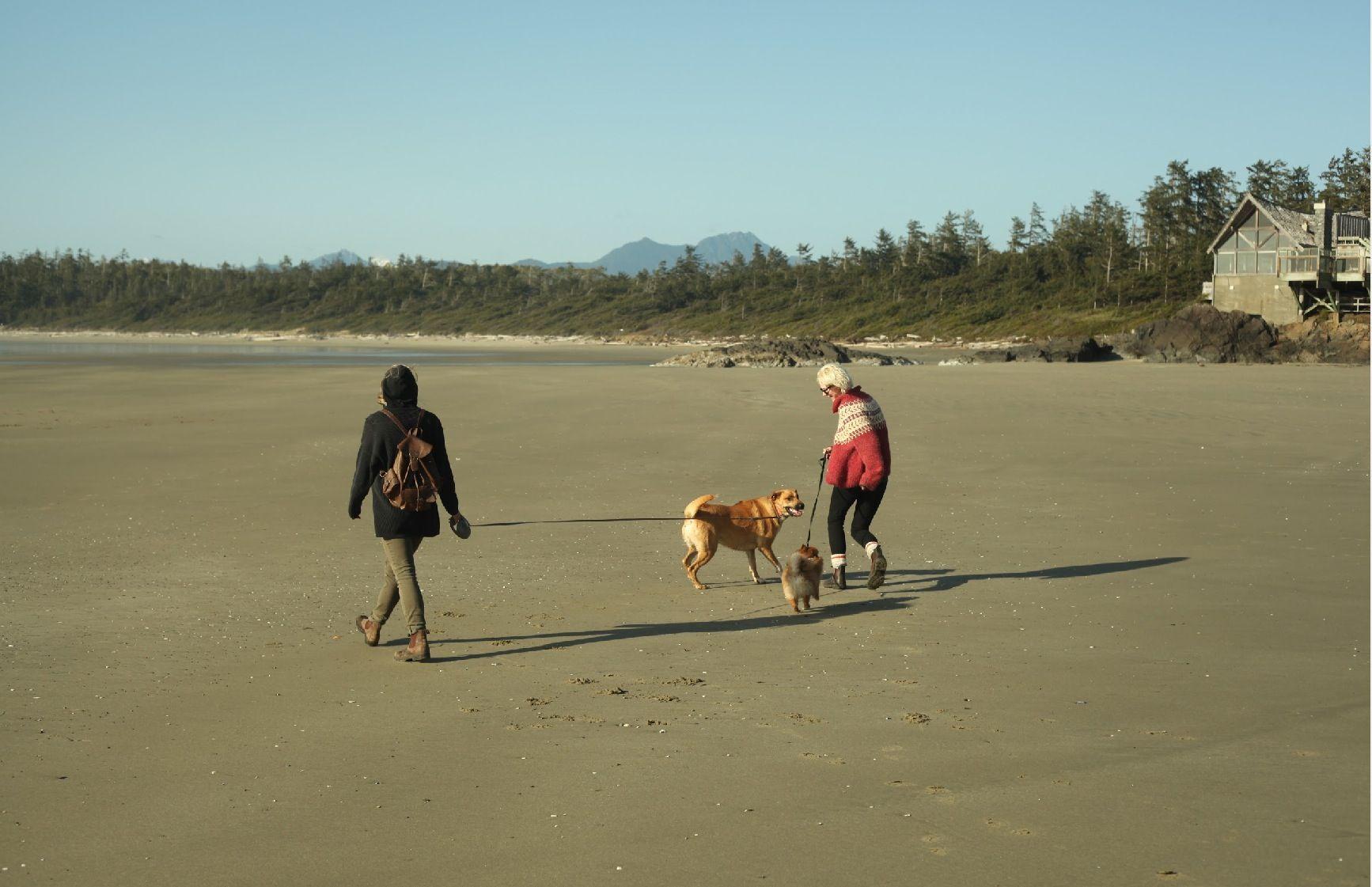 Miss this biatch & beach