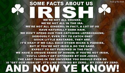 About being Irish ... | Ireland in my blood! in 2019 ...