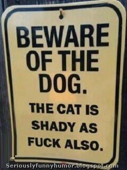 Beware of the #dog. The #cat is shady as fuck also!