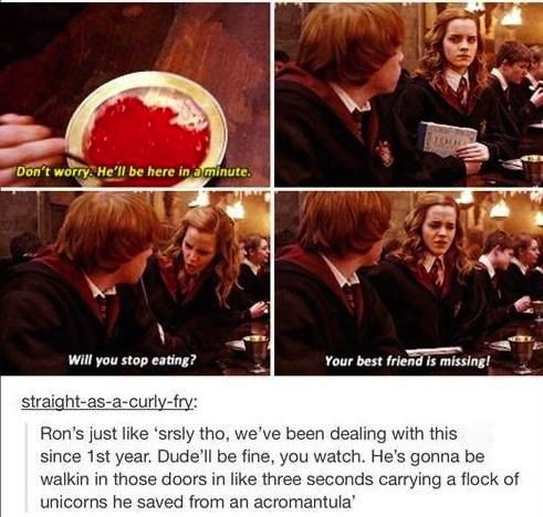 Pin By Maddie Safford Author Hi Its On Potterness Harry Potter Obsession Harry Potter Universal Harry Potter Jokes