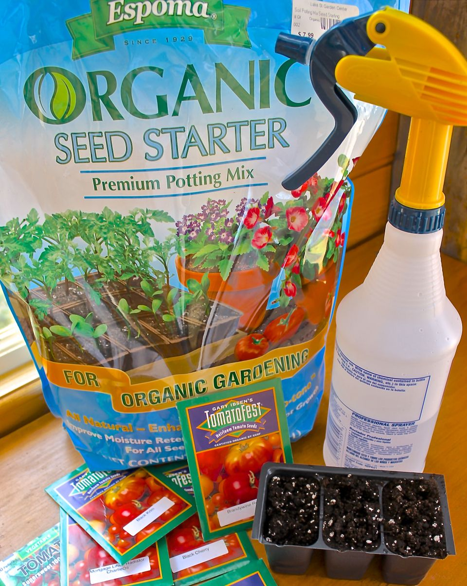 Tips On Growing Tomatoes Successfully Growing tomatoes