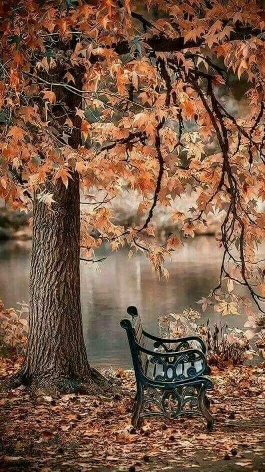 Pin by meri on vende te bukura per pushime | Autumn scenery