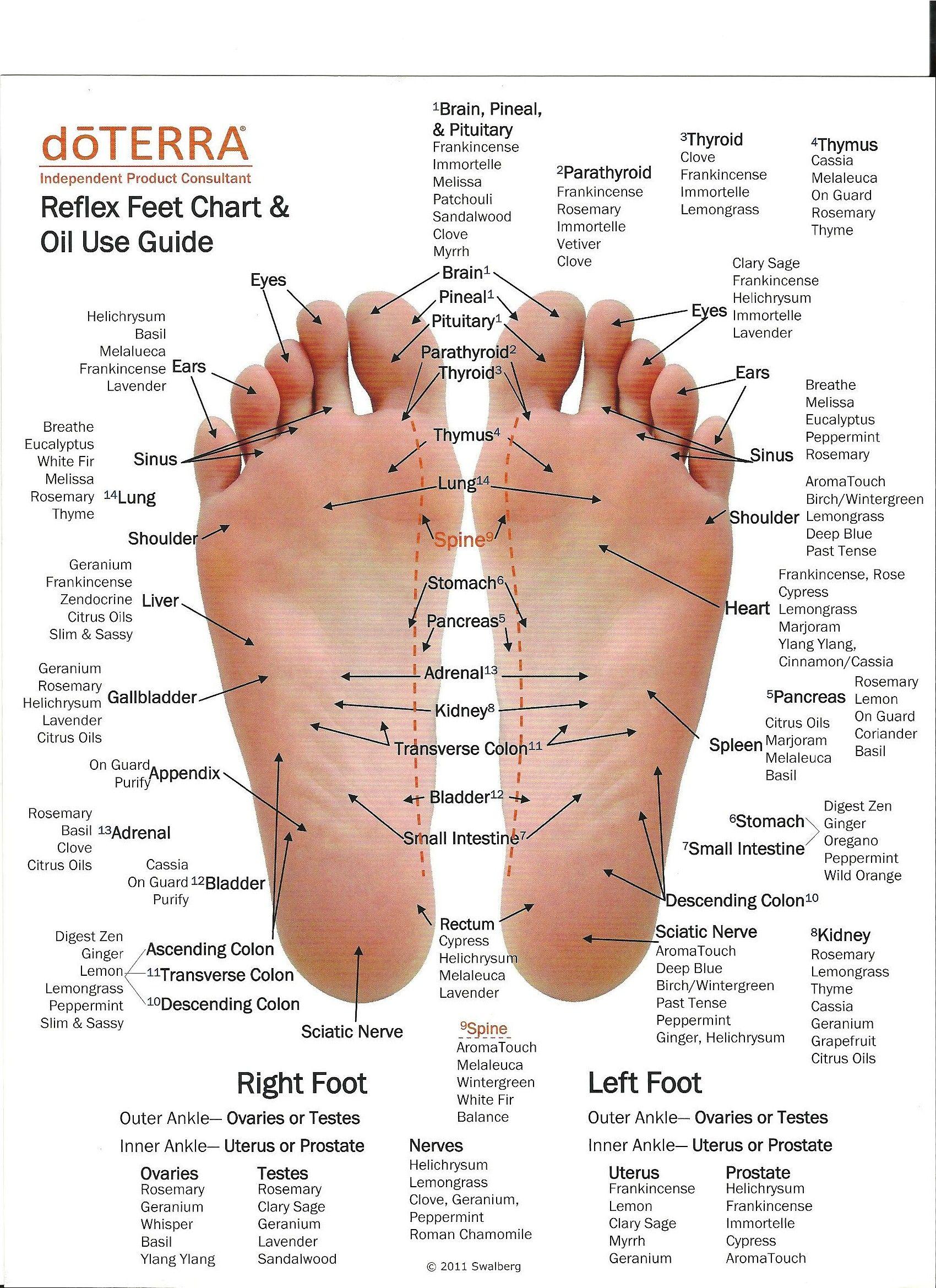 Reflexology & Essential Oils Chart. http://mydoterra.com ...