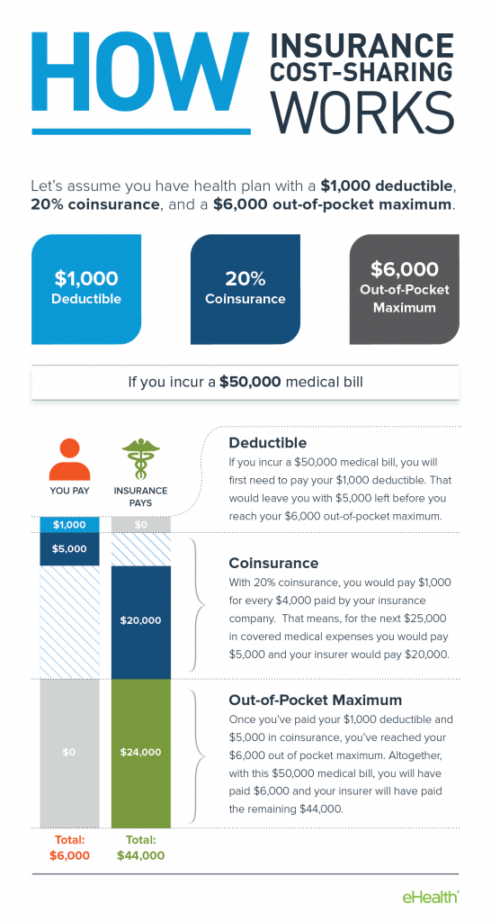 Health Insurance Terms Infographic Infographic Health Medical