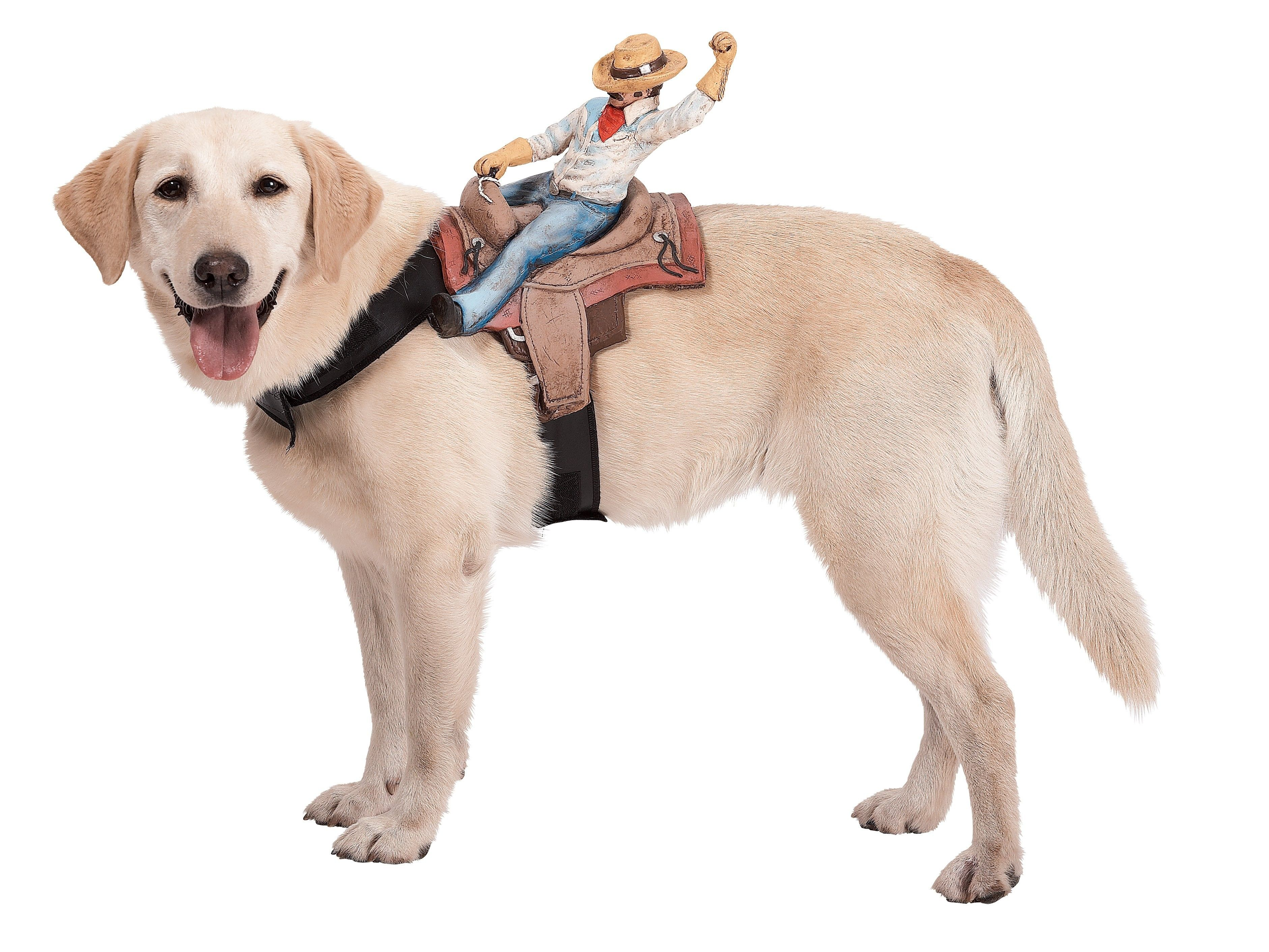 Dog Riders Cowboy Costume Includes one dog harness with