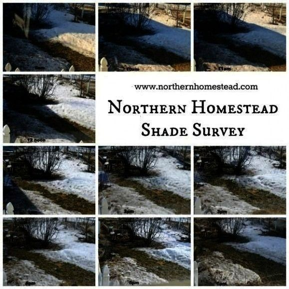 garden shade survey is important for making garden plans If there is shade in April there also will be shade in SeptemberTo do a garden shade survey is important for maki...