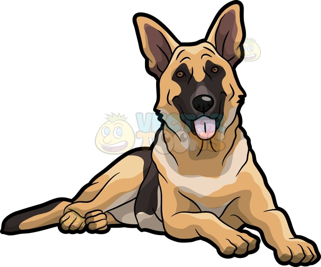 A Pretty German Shepherd Dog A Dog With Golden Brown And Dark