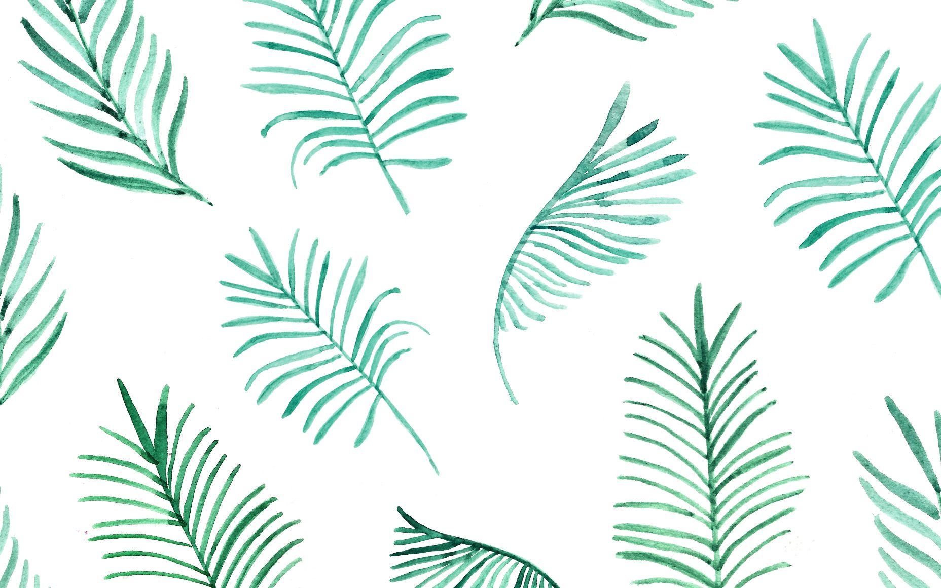 Pretty Palm Leaves Spruce Up Your Desktop More