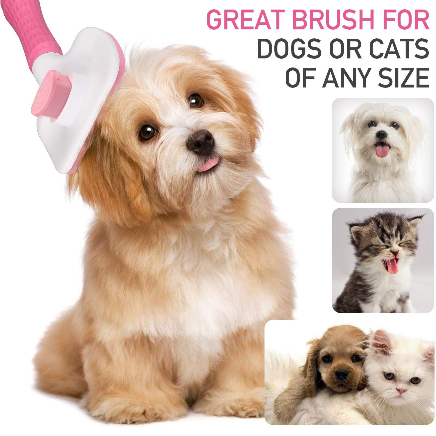 Timingila Self Cleaning Slicker Brush For Dogs And Cats Visit The Image Link More Details It Is An Affili In 2020 Pretty Dogs Hunting Dogs Accessories Dog Anatomy