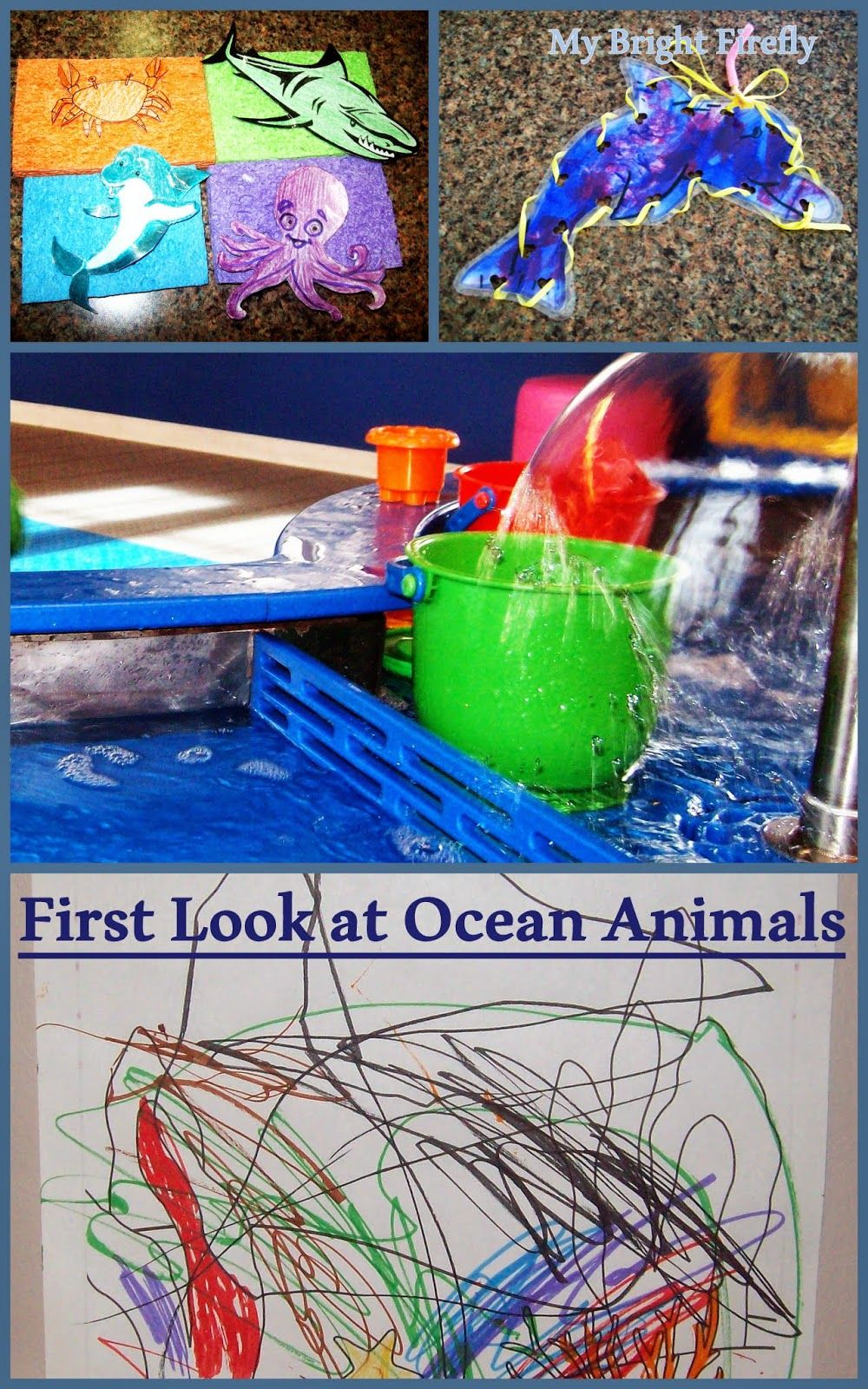 First Look at Ocean Animals Fun activities for