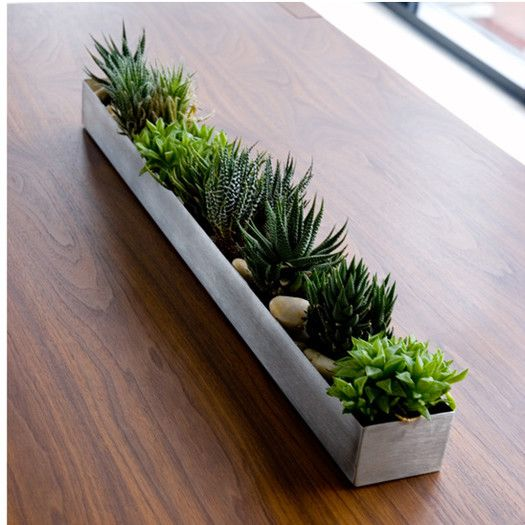 Could Totally Make Something Like This Out Of Steel Spackle Trays From Harbor Freight Would Look Amazing Rectangular Planter Box Succulents Diy Plants
