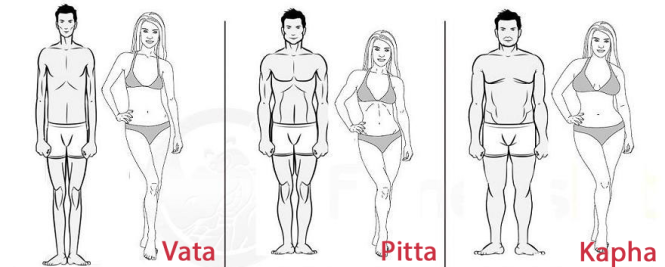 Your Body Type And The Ayurvedic Doshas Vata Kapha And Pitta Energies Kapha Body Type Ayurveda Dosha Ayurveda