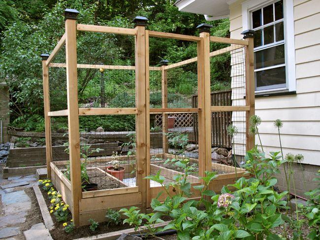 veggie garden | Deer resistant garden, Veggie garden ...