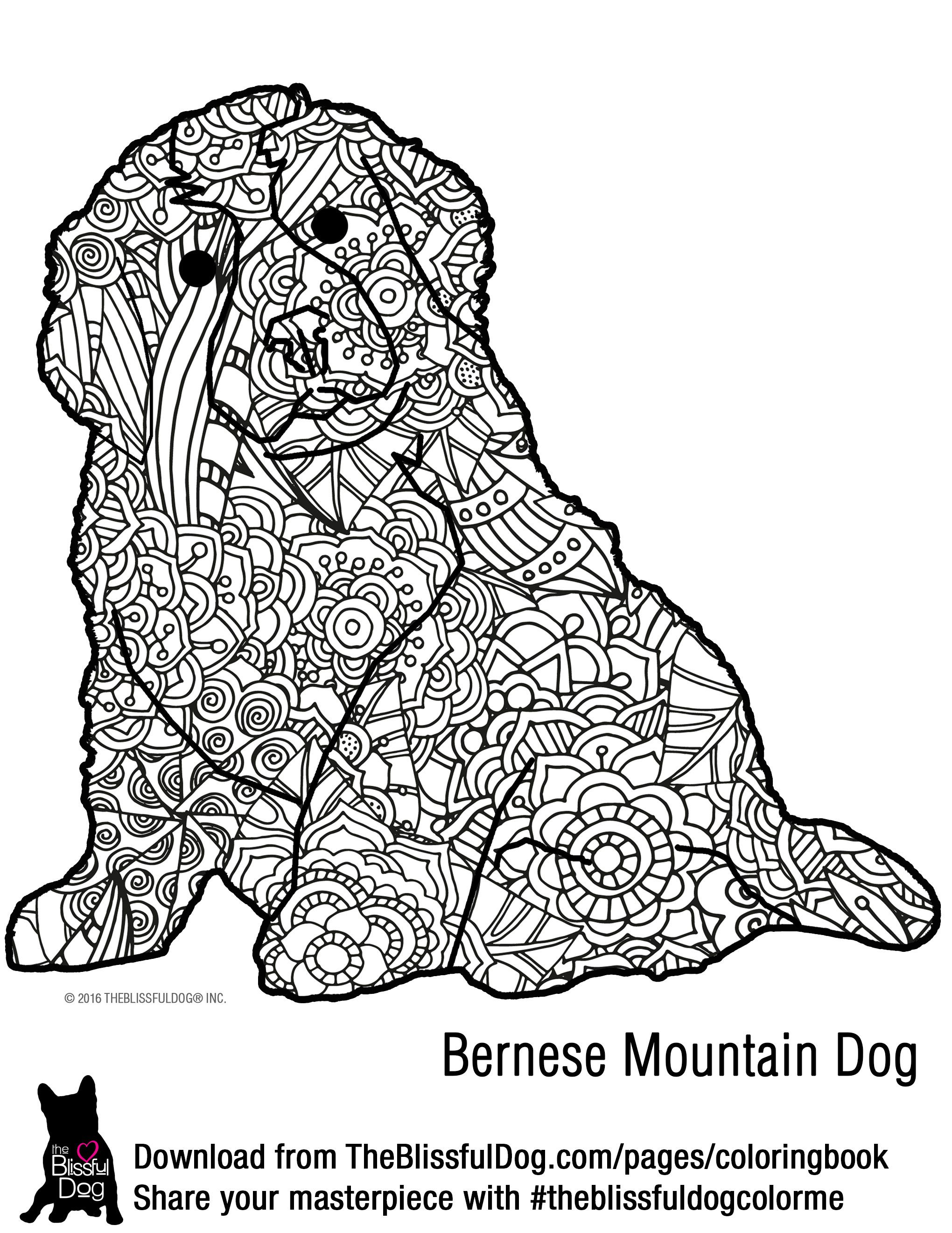 Coloring Book | Bernese mountain dogs, Bernese mountain and Mountain ...