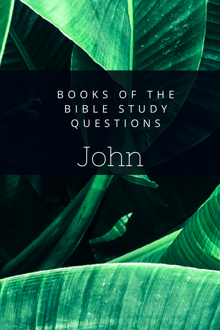 Books of the Bible Study Questions: John | Bibles and Bible
