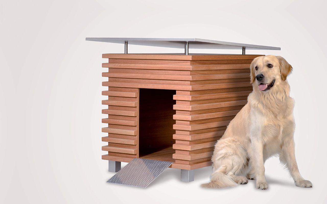 Cucce Design Per Cani cane fuori di casa? ecco una selezione di cucce per cani da