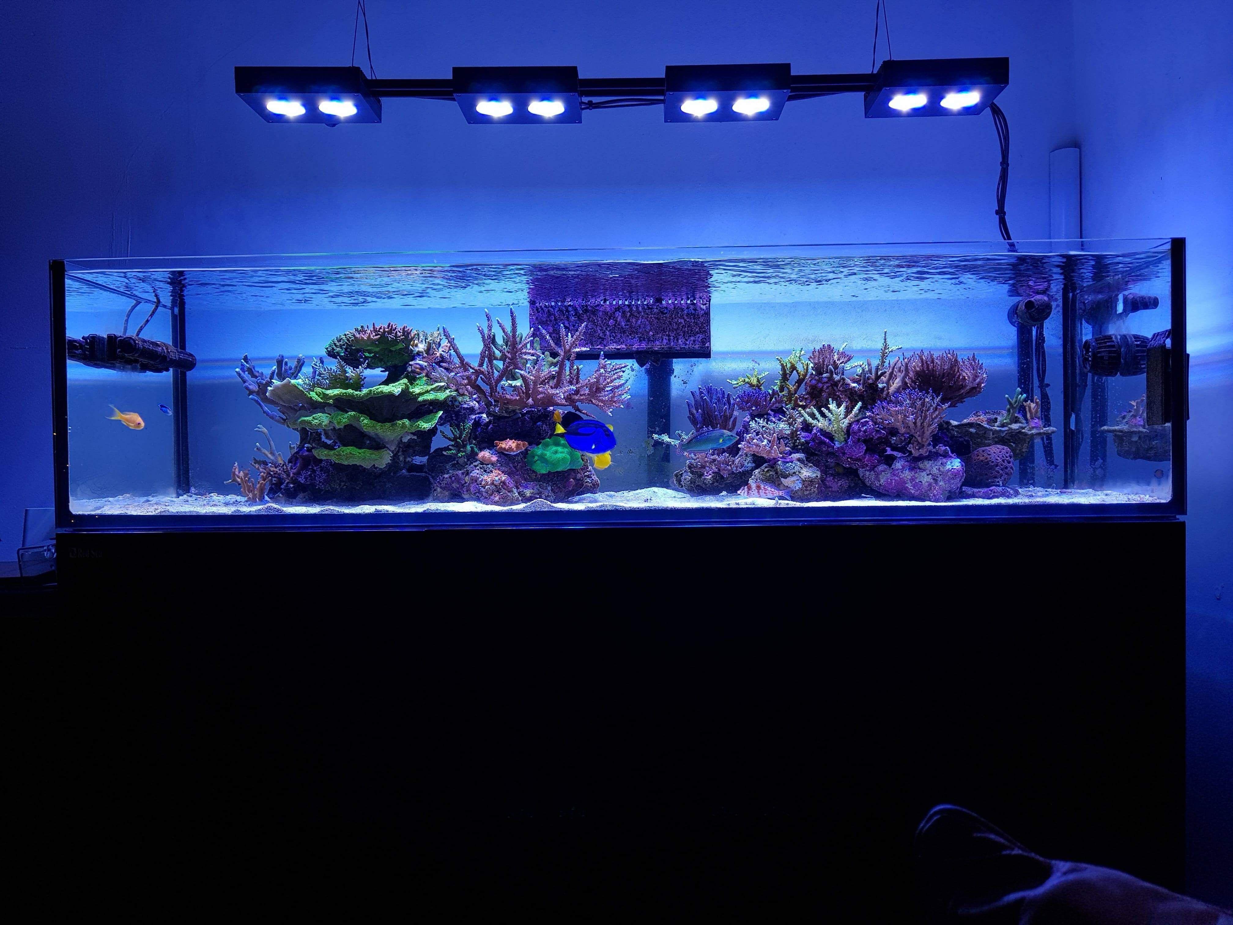 Mars Aqua 300 Watt Led Modification Marine Tank Reef Lighting Sea Tank