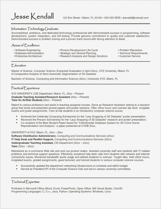 Report Requirements Document Template Professional Resume Template Information Technology Professional Valid Resume - 10+ Professional Templates