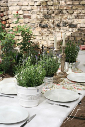 Potted plants. I love the color scheme of natural fabrics and colors (burlap, beige, white) highlighted by the greens of leaves and flowers.