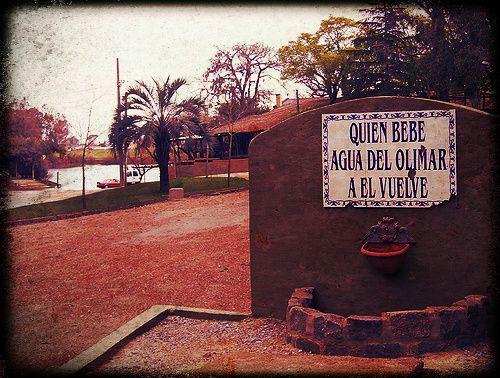 Parque do Rio Olimar - Treinta y Tres - Uruguay / Park of River