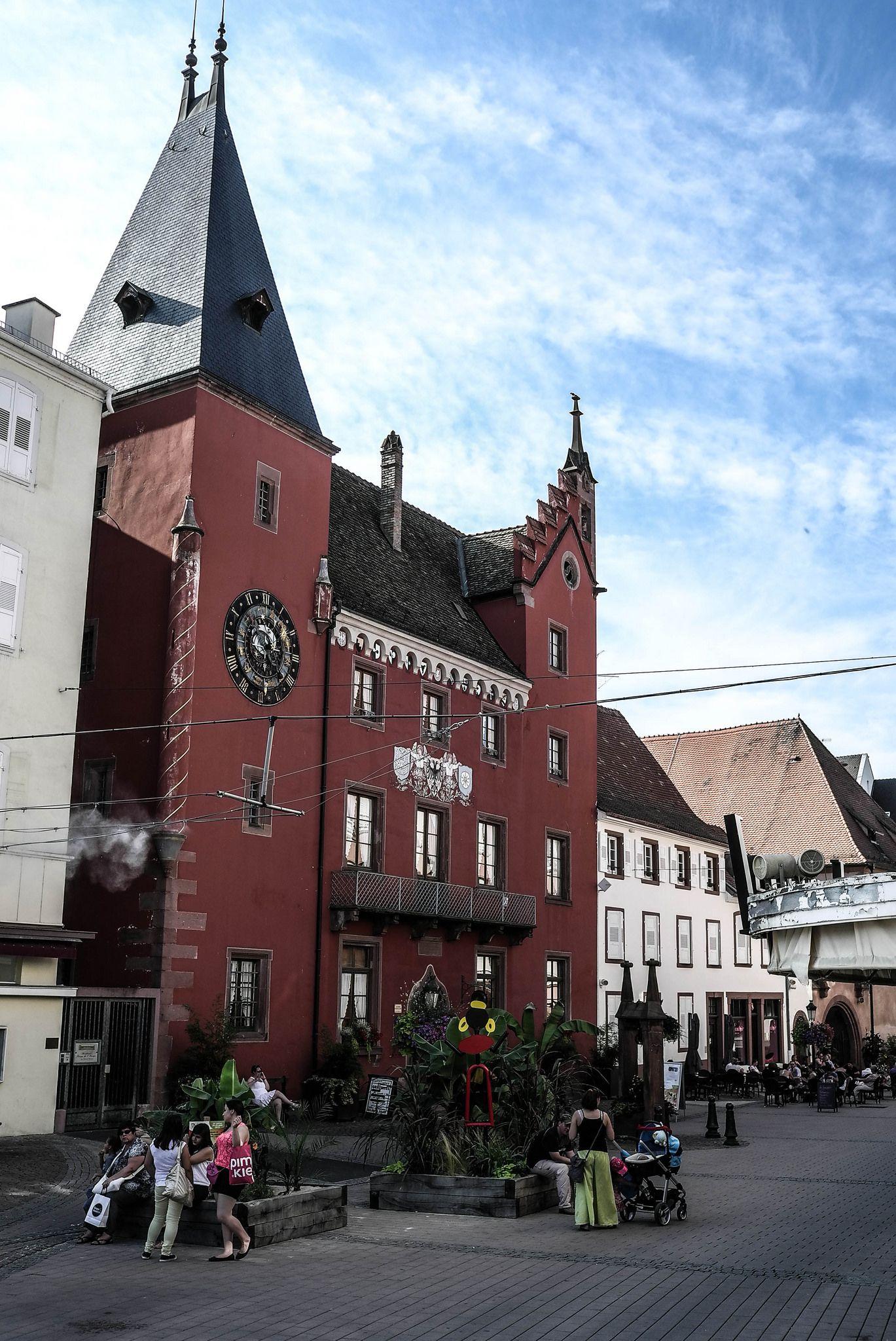 Paysagiste Surbourg Haguenau Wissembourg Sarl Terravert Farben