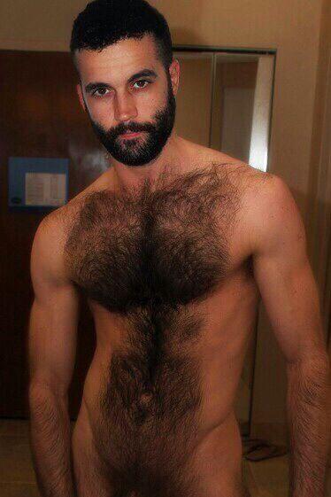 Hot sexy hairy men