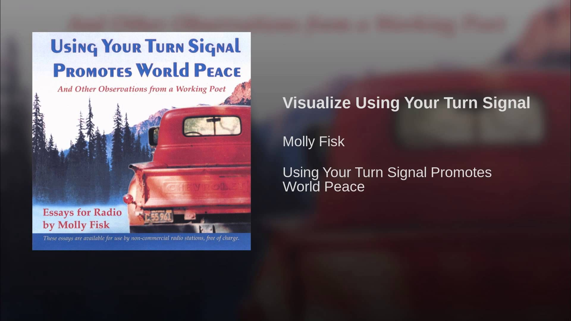 visualize using your turn signal