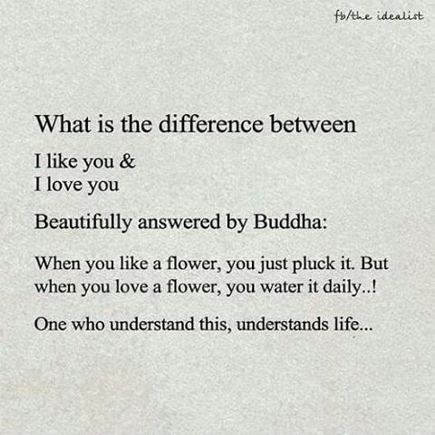 #quotes #quotestoliveby #quoteoftheday #quotesaboutlifequotesandsayings #lifequotes #life #lifestyle #bestquotes #bestquoteever #bestquote #motivationalquotes #motivation #people #peoples #happiness #happinessquotes #happier #love #lovequotes #care #sharethelove #strongquotes #strongquote #buddha #understanding #goodmorningpost #goodquotes http://quotags.net/ipost/1493432923650360969/?code=BS5vVTeDYaJ