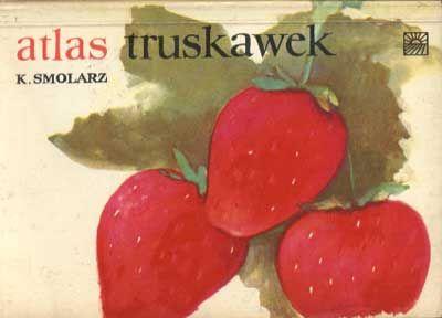 Znalezione obrazy dla zapytania Kazimierz Smolarz Atlas truskawek