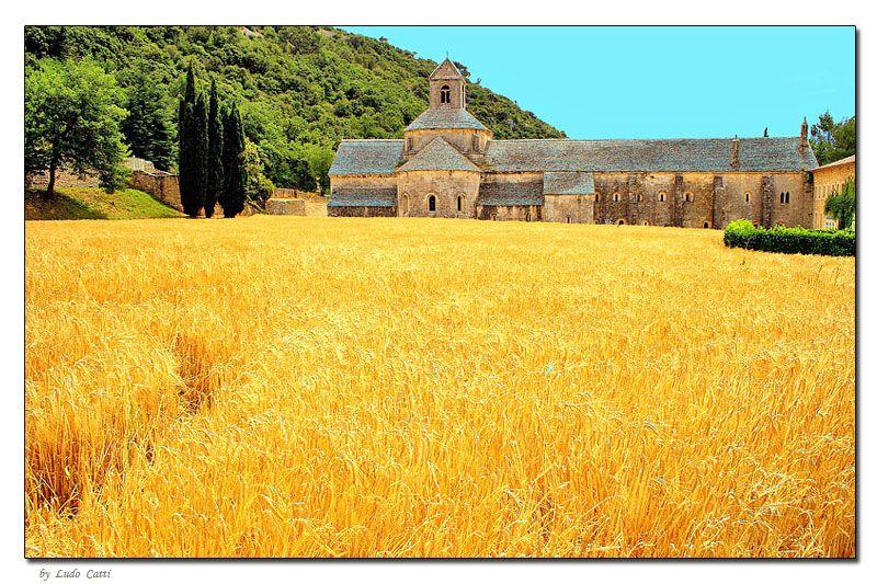 Sénanque Abbey in Provence, France via Ludo Catti