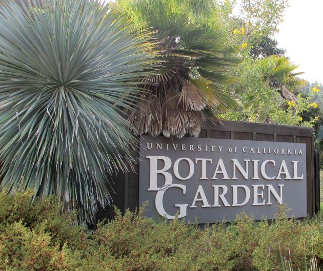 University Of California Botanical Garden Botanical Gardens Aquarium Garden Botanical