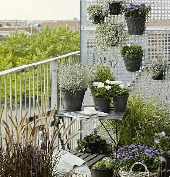 10 Small Balcony Garden Ideas You Should Look   Green ...