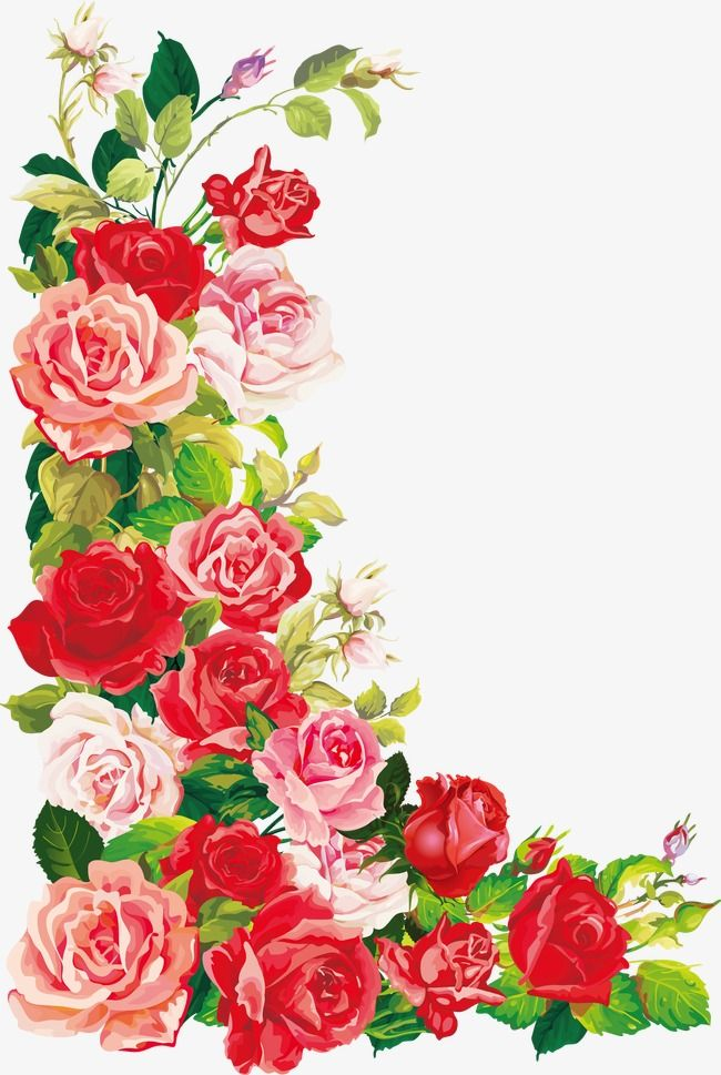 Beautiful Roses Rose Flower Card Beautiful Flowers Birthday Card Rose Decoration Beautiful Vector Roses Transparent Flowers Flower Birthday Cards Flower Cards