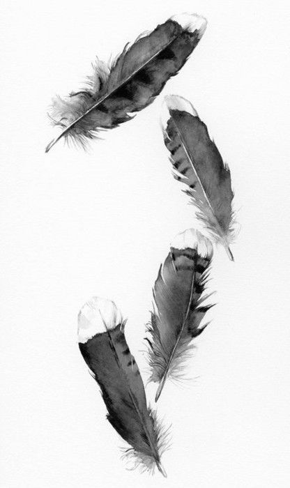 4 feather painting