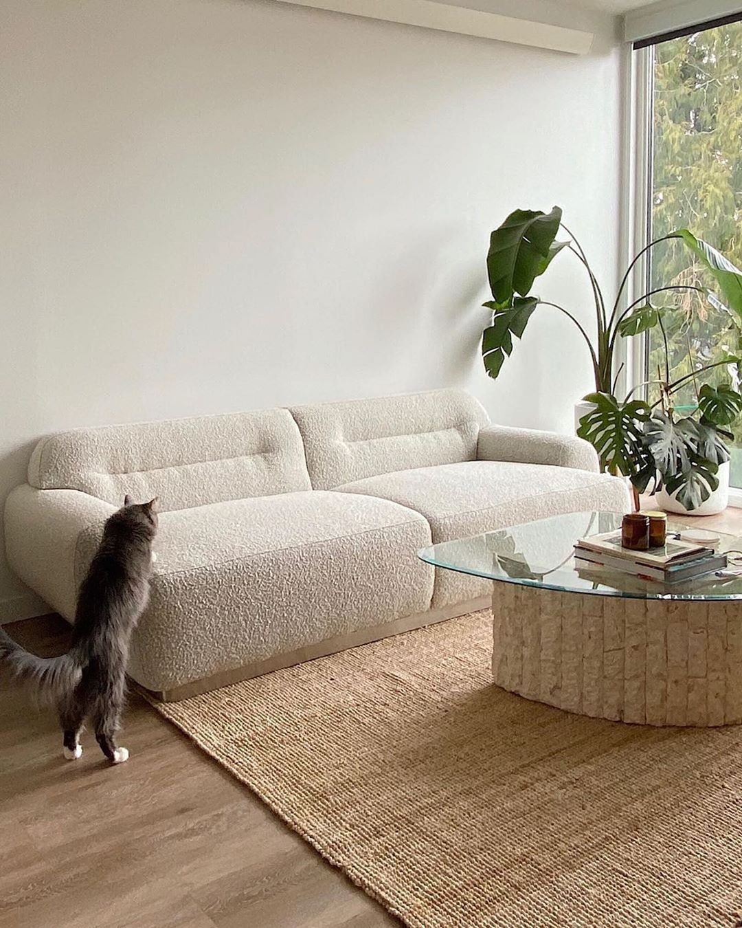 The Good Trade On Instagram Looking For The Purr Fect Place To Curl Up Look No Further Our Favorite Sus Interior Aesthetic Room Decor Home Decor Inspiration Living room no couch
