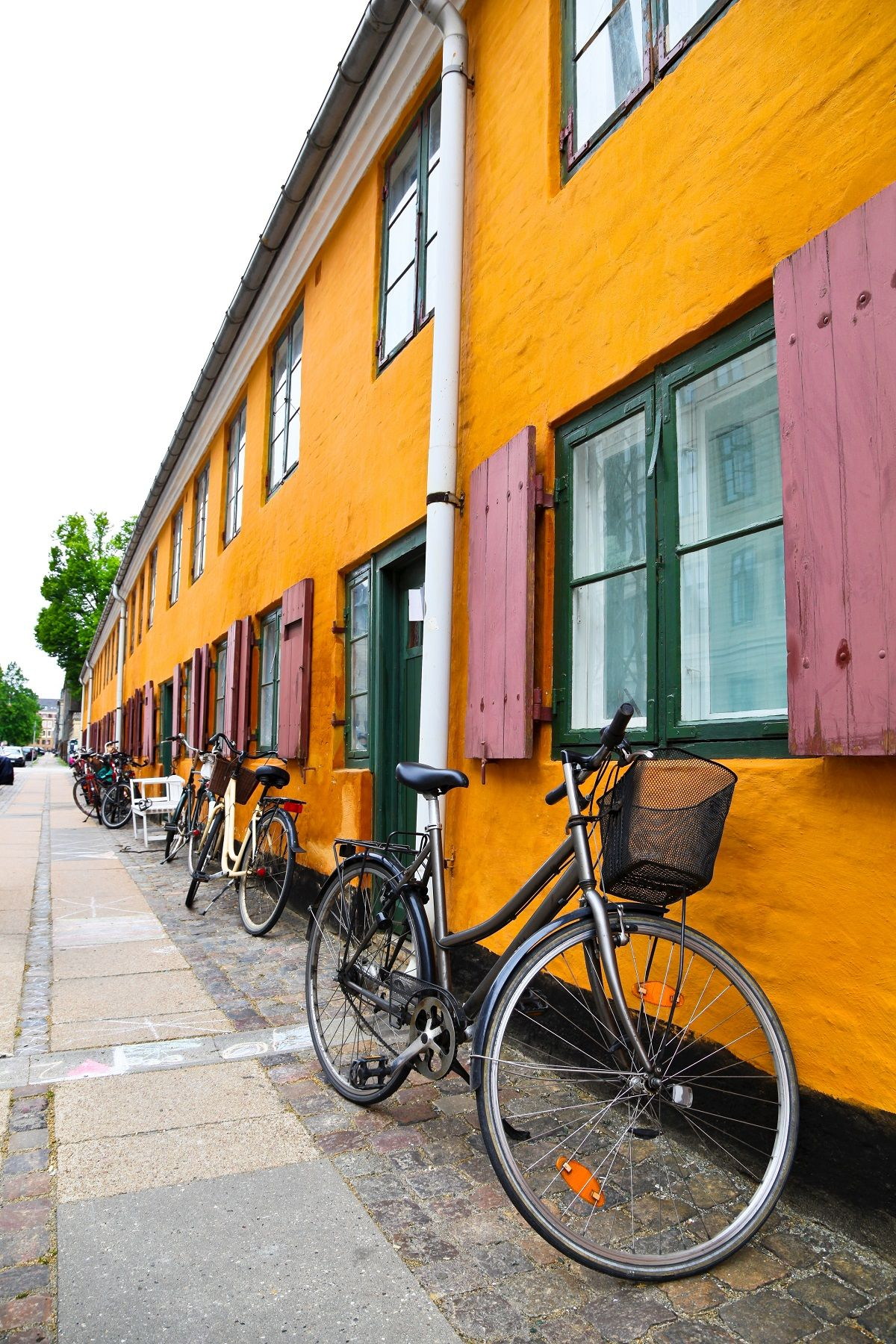 Enjoy an alternative sightseeing experience of Copenhagen on a private bike tour of the dazzling Danish capital.