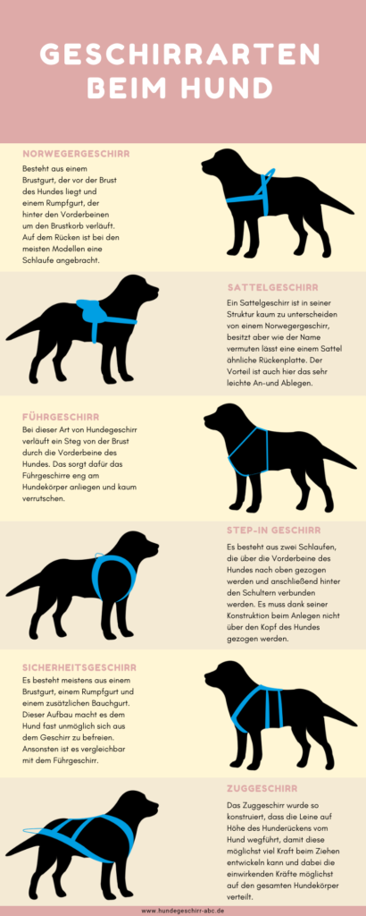 The main dog harness types These models should you ... , The main dog harness types These models