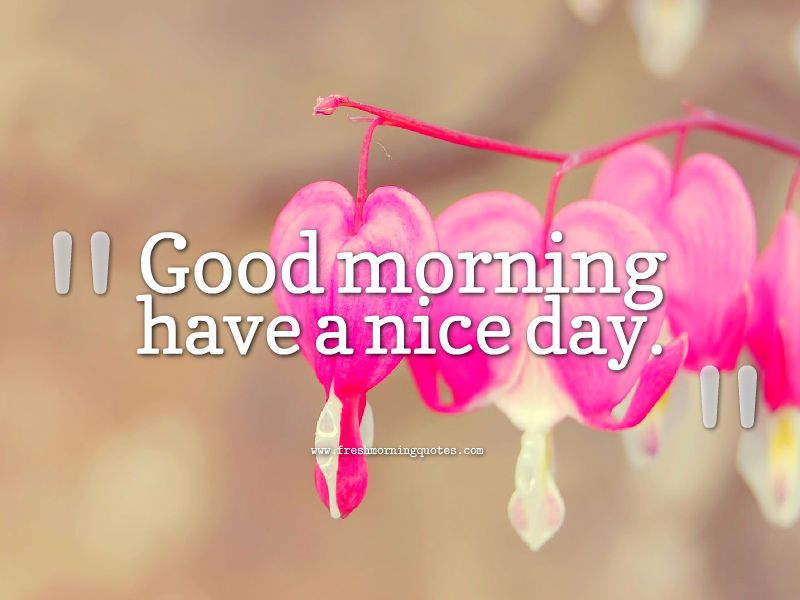 20 Beautiful Good Morning Have A Nice Day Wallpapers Places To