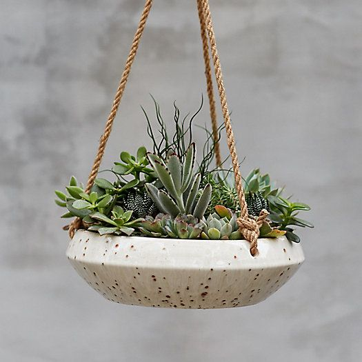 Handmade From Durable Earthenware This Shallow Bowl Planter Is Suspended From A Length Of Rustic Jute Rope Ea Hanging Plants Apartment Garden Hanging Pots