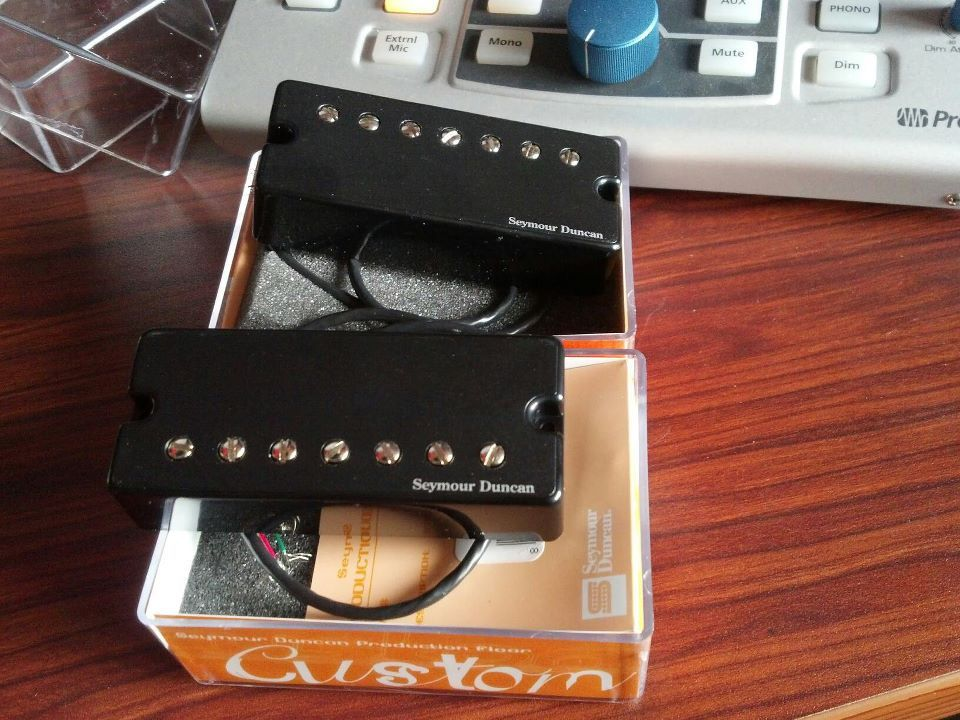 Seymour Duncan passive 7-string pickups (active housing) | Guitar ...