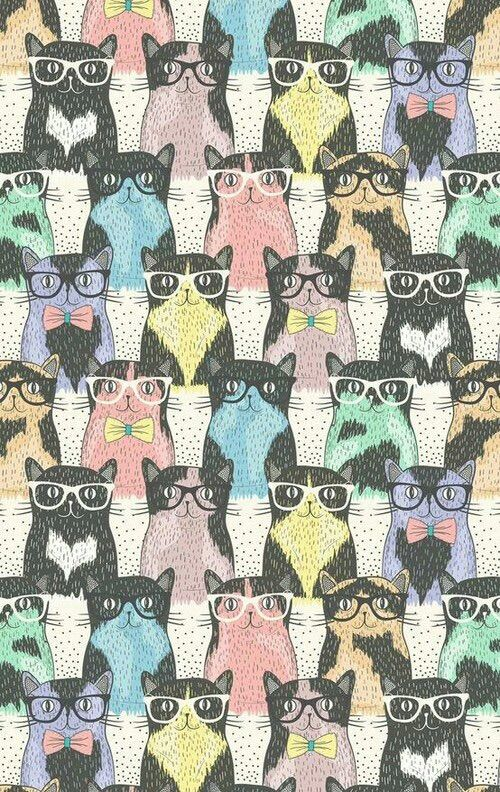 Image Via We Heart It Background Cats Colors Cool Creative