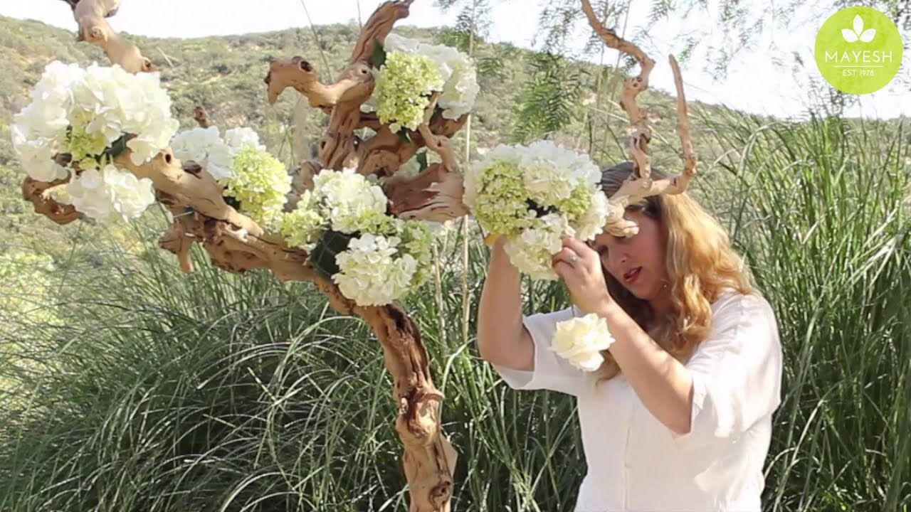 Inspired Floral Design With Beth O Reilly Driftwood Tree Tablescape Youtube Flower Wall Wedding Diy Outdoor Weddings Tree Wedding