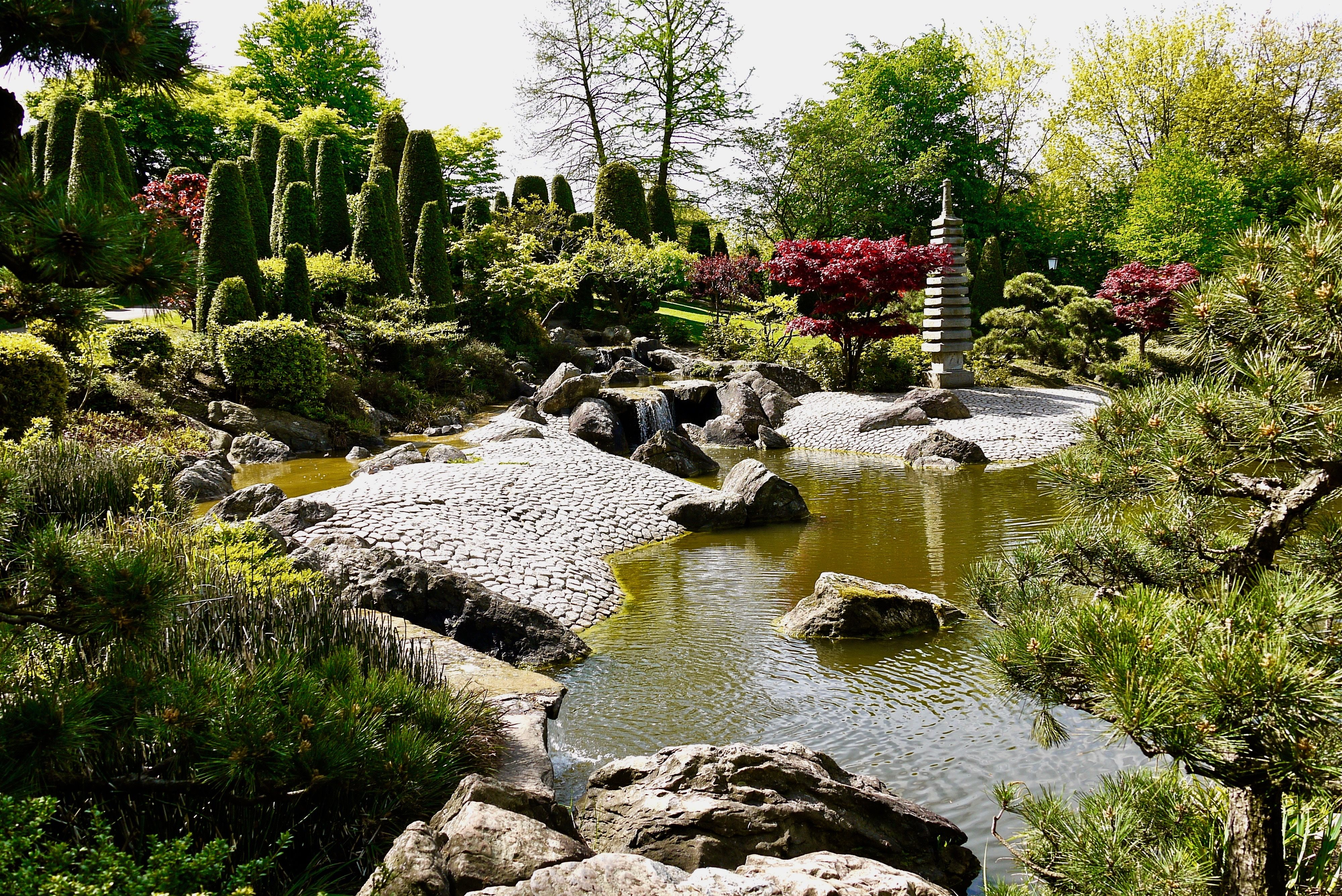 Japanischer Garten in Bonn Botanischer garten bonn, Garten