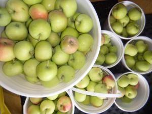 Apples 3 Ways {Pie Filling, Butter & Sauce}    http://borninthewrongcentury.com/2011/09/07/apples-3-ways-pie-filling-butter-sauce/