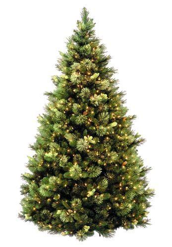 7.5' Pre-lit Carolina Pine Hinged Christmas Tree at Menards - 7.5' Pre-lit Carolina Pine Hinged Christmas Tree At Menards