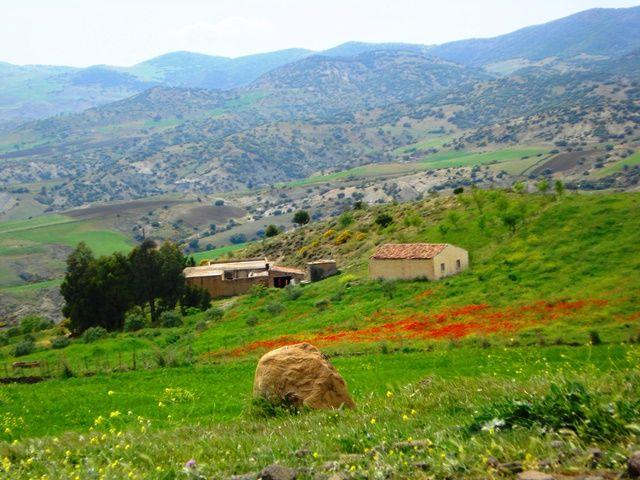 Bouira Algérie